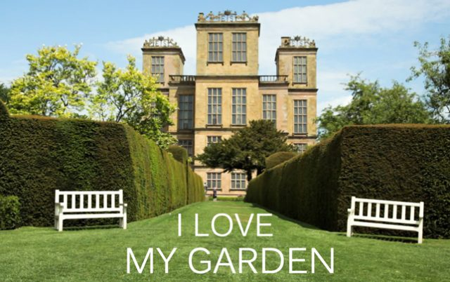 I Love My Garden-image